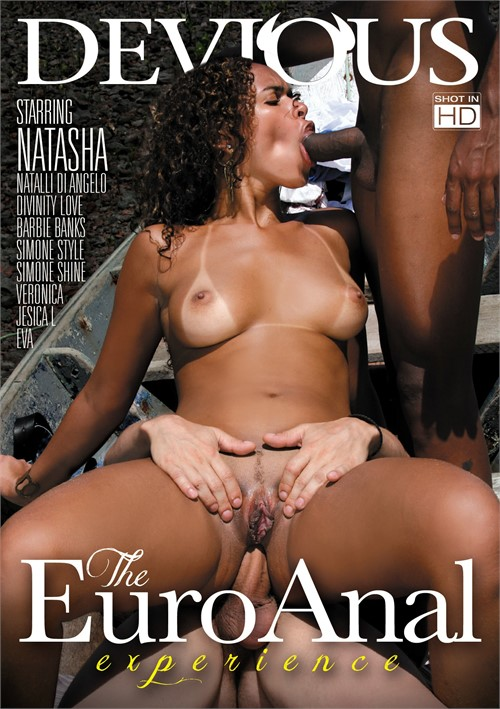 Euro Anal Experience, The