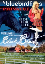 Black Beauty Vol. 1 Porn Video