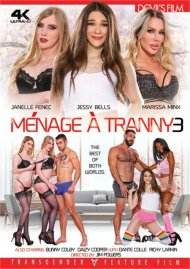 Menage A Tranny 3 image