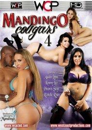 Mandingo Cougars 4 image