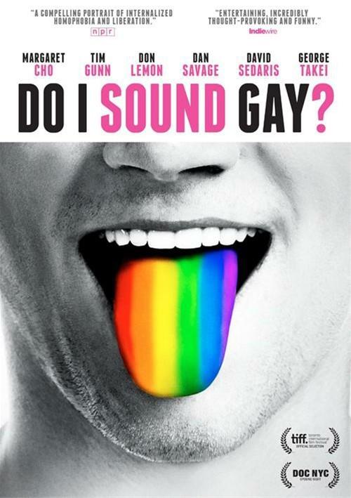 Do I Sound Gay? image