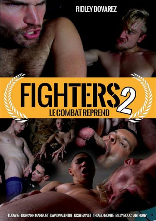 Fighters 2 Boxcover