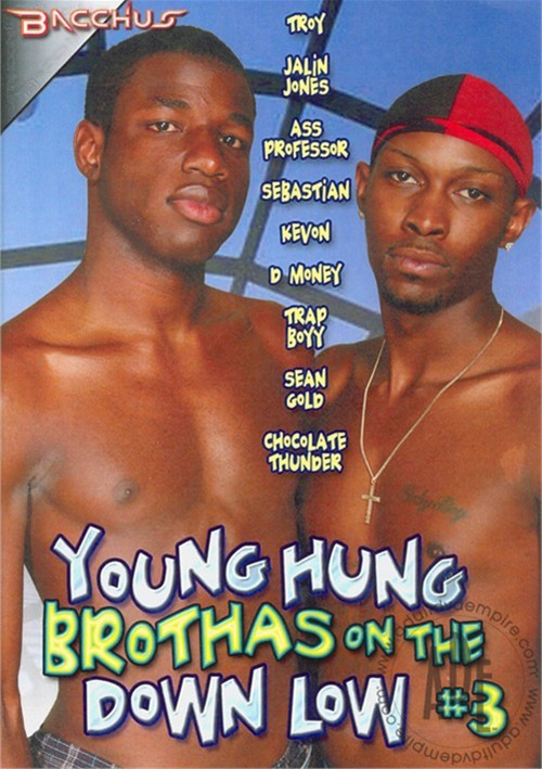 Young Hung Brothas On The Down Low #3 Boxcover