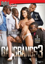 Gangbangs 3, The