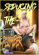 Seducing The Plumber Porn Video
