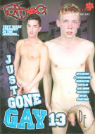 Just Gone Gay 13 Boxcover