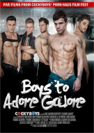 Boys To Adore Galore Boxcover