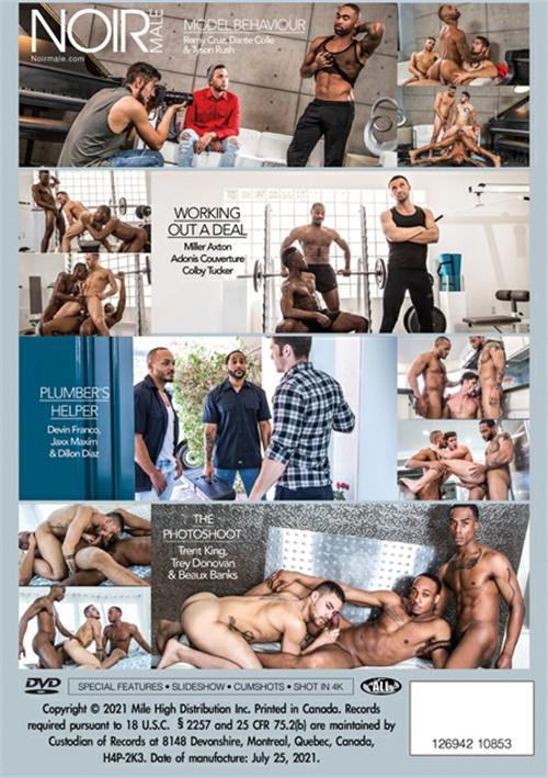 Gay Threesomes (Noir) Cover Back