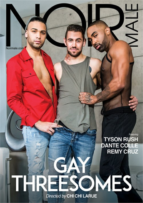 Gay Threesomes (Noir) Cover Front