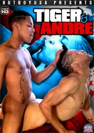 Tiger & Andre image