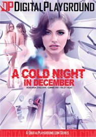 Cold Night In December, A