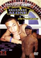 Home Alone Boxcover