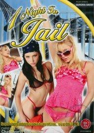 1 Night In Jail Porn Video