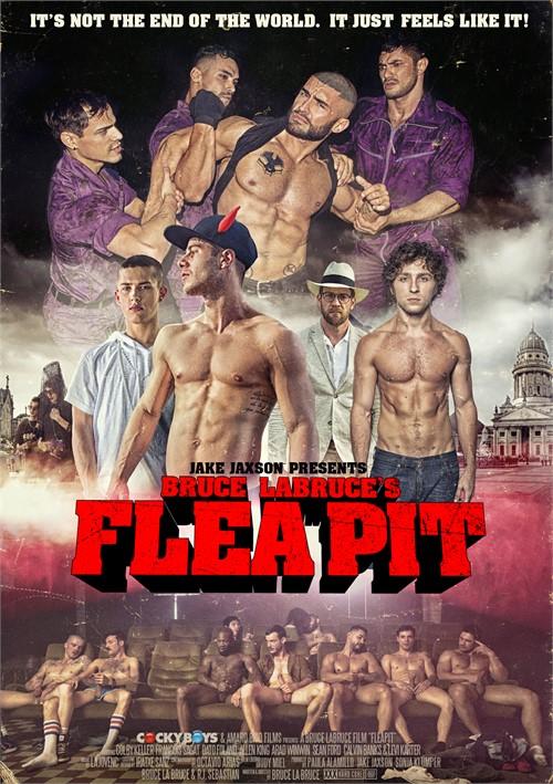 Flea Pit Boxcover