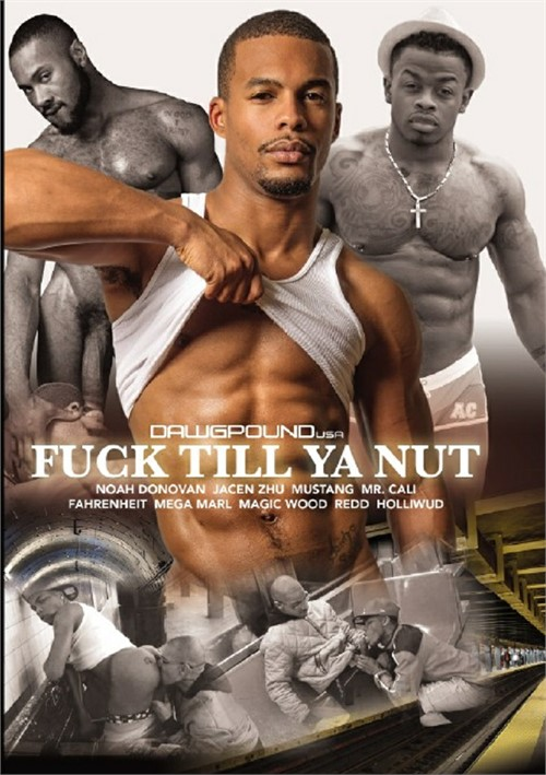 Fuck Till Ya Nut Boxcover