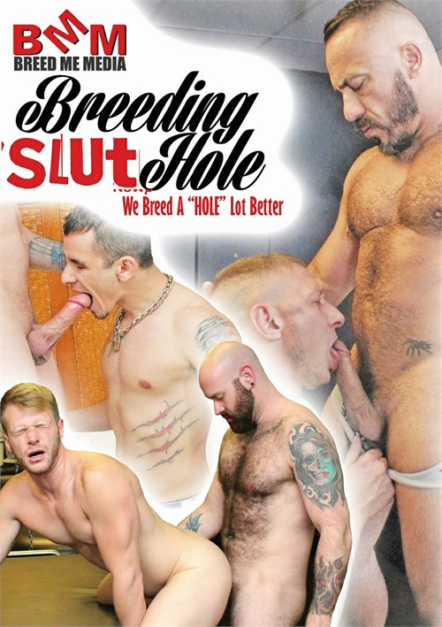 Breeding Slut Hole Boxcover