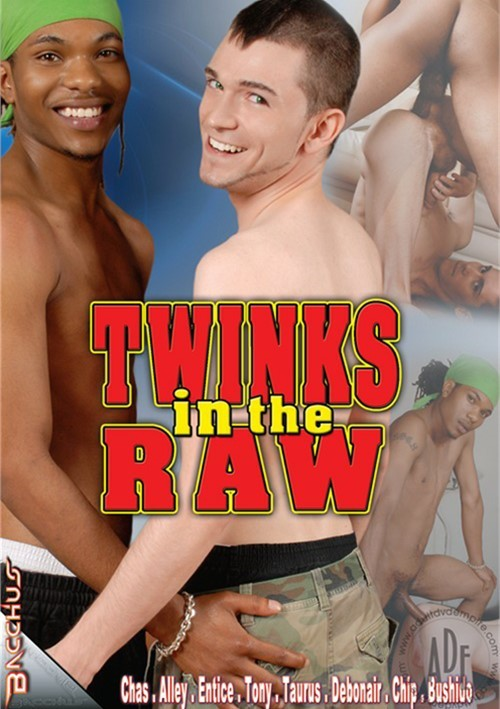 Twinks In The Raw Boxcover
