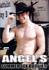 Angel's Summer Sex Buddies Boxcover