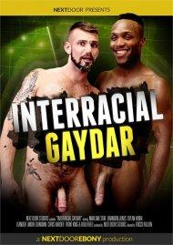 Interracial Gaydar streaming porn video.