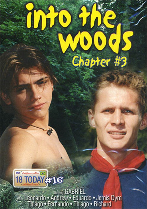 18 Today International #16: Into the Woods Chapter #3 Boxcover