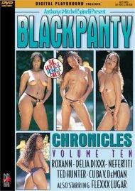 Black Panty Chronicles Vol. 10