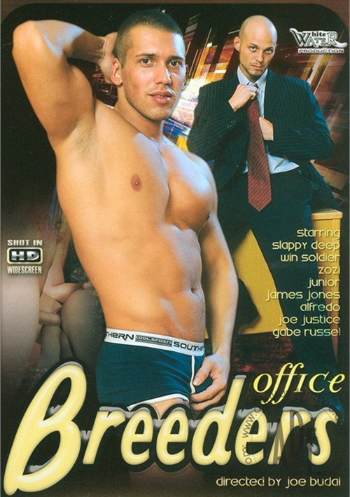 Office Breeders Boxcover