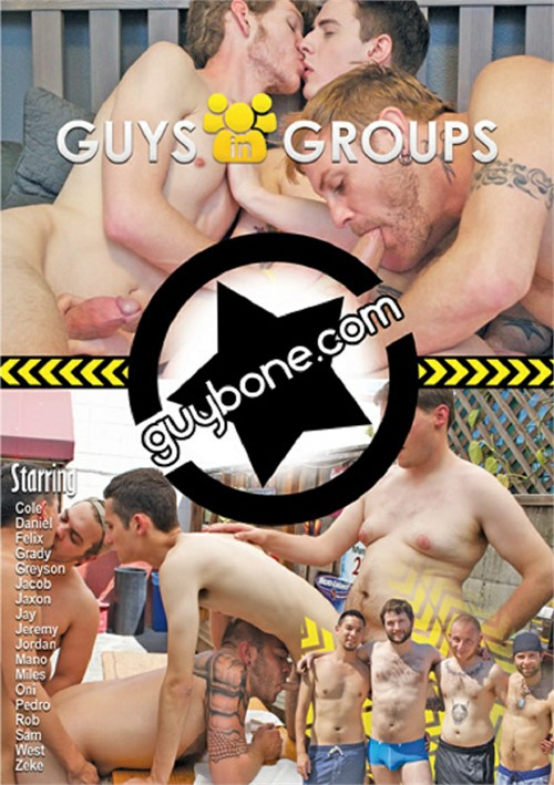 Guys in Groups Boxcover