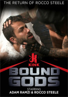 The Return of Rocco Steele Boxcover