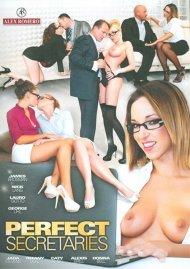 Perfect Secretaries Porn Video