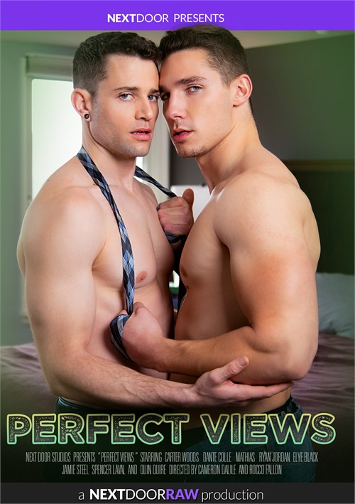 Perfect Views Cover Front