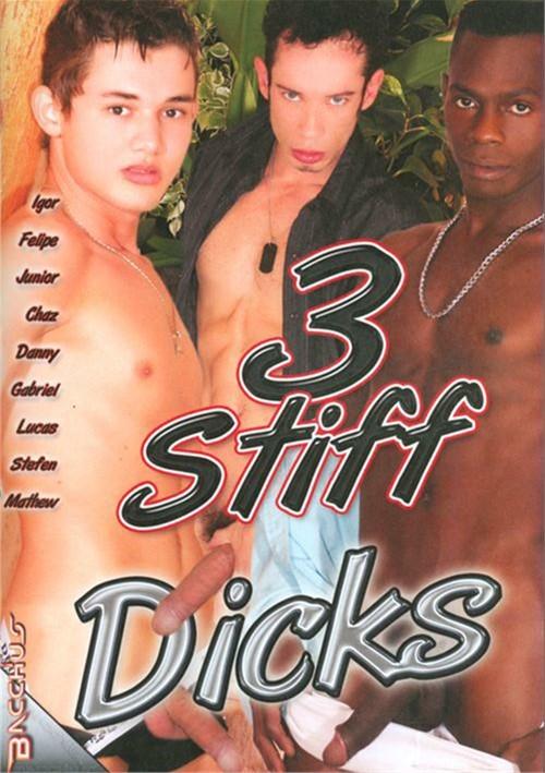 3 Stiff Dicks Boxcover