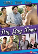 Big Gay Love Boxcover