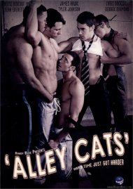 Alley Cats image
