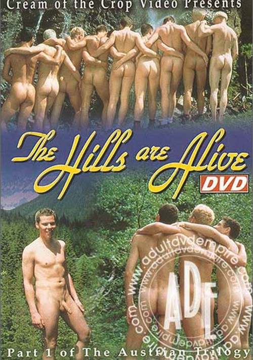 Hills Are Alive, The Boxcover