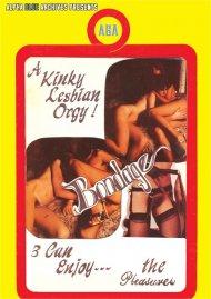 Kinky Lesbian Orgy, A Porn Video
