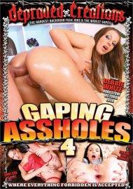 Gaping Assholes 4 Porn Video