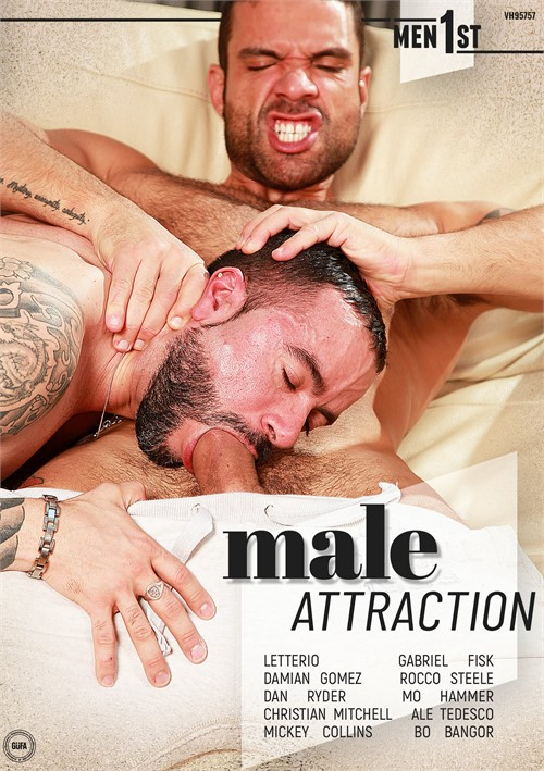 Male Attraction Boxcover