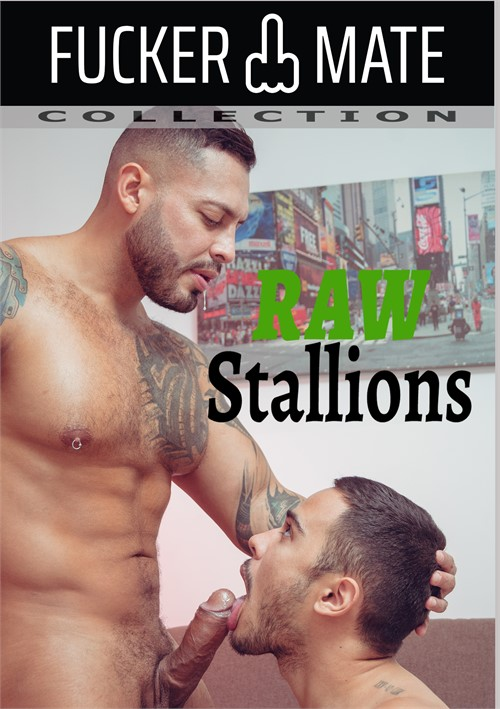 Raw Stallions Cover Front