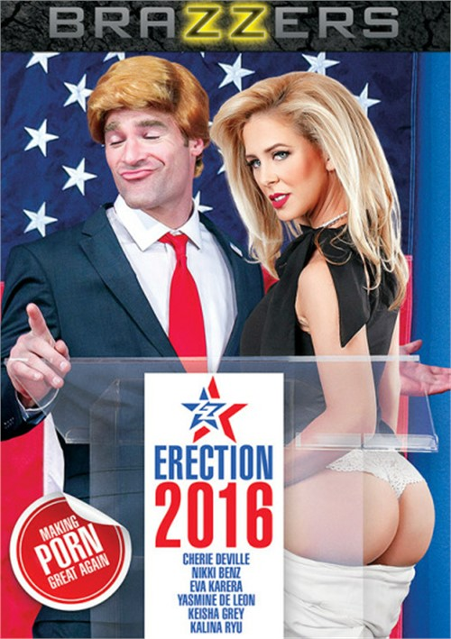 ZZ Erection 2016