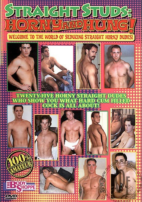 Straight Studs Horny and Hung Cover Front