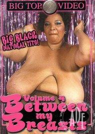 Between My Breasts Volume 4 image