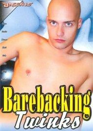 Barebacking Twinks image