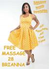 Free Massage 28: Brianna Boxcover