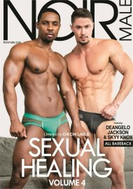 Sexual Healing Vol. 4 gay porn DVD from Noir Male