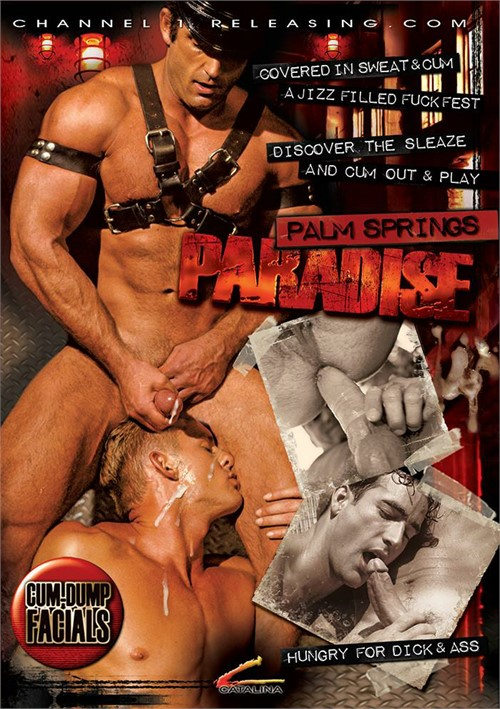Palm Springs Paradise Boxcover