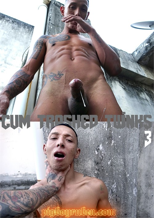 Cum Trashed Twinks 3 Boxcover