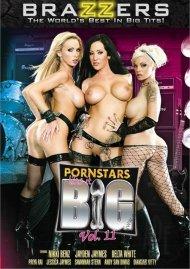 Pornstars Like It Big Vol. 11