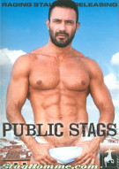 Public Stags Gay Porn Movie
