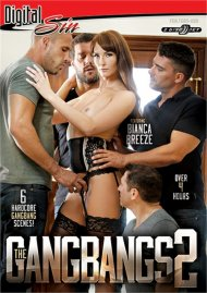 Gangbangs 2, The Porn Video