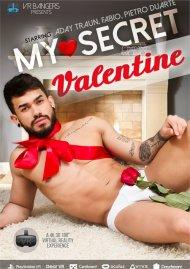 My Secret Valentine gay porn VOD from VRBangers Gay